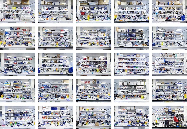 OPTOGENOME V - 50 benches I (2013)