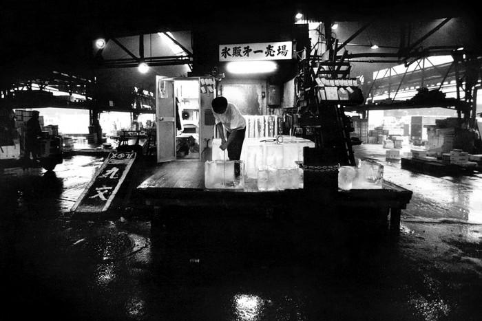 Tsukiji IX